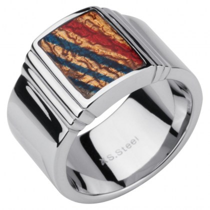 Stainless Steel Ring *Earth*